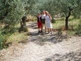 foto-anne-i-olivenlunden-2